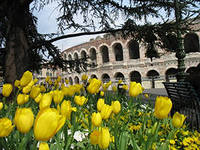 весна в италии